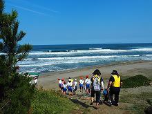 海辺の活動①